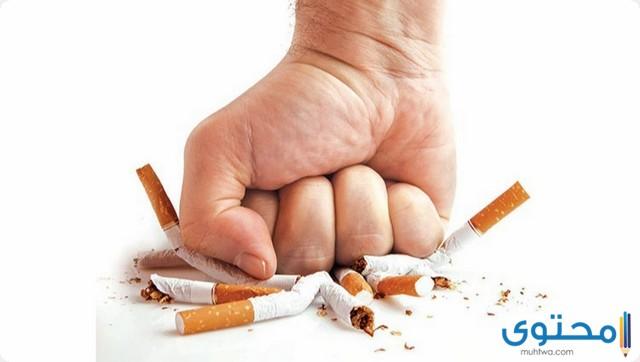 موضوع تعبير جديد عن التدخين 2020