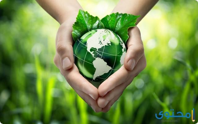 موضوع تعبير جديد عن المحافظة على البيئة 2020 موقع محتوى
