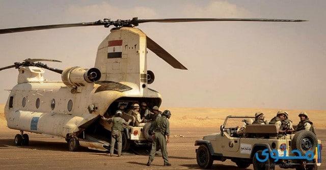 الأفرع الأساسية للجيش المصري