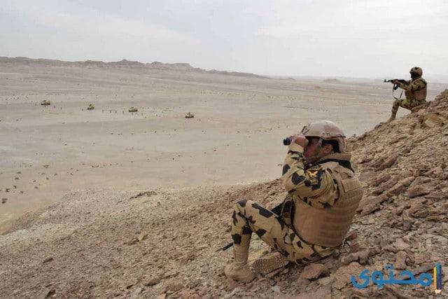 دور الجيش المصري