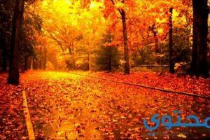 موضوع تعبير عن الخريف