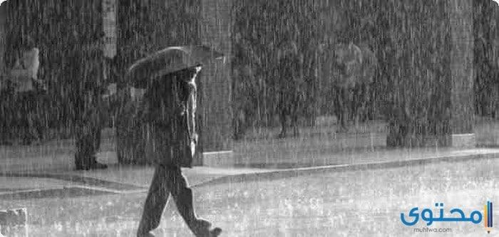 موضوع تعبير عن جمال الشتاء في مصر