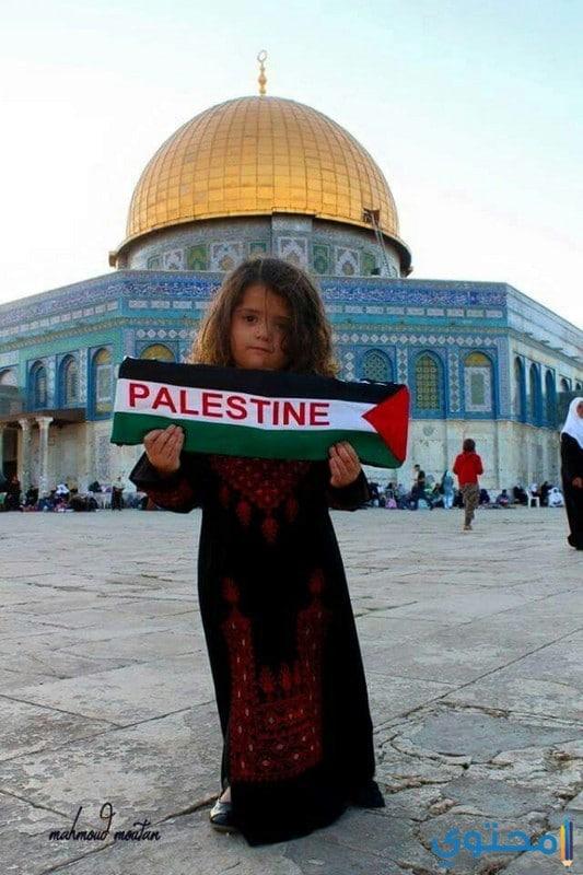 موقع فلسطين ومناخها