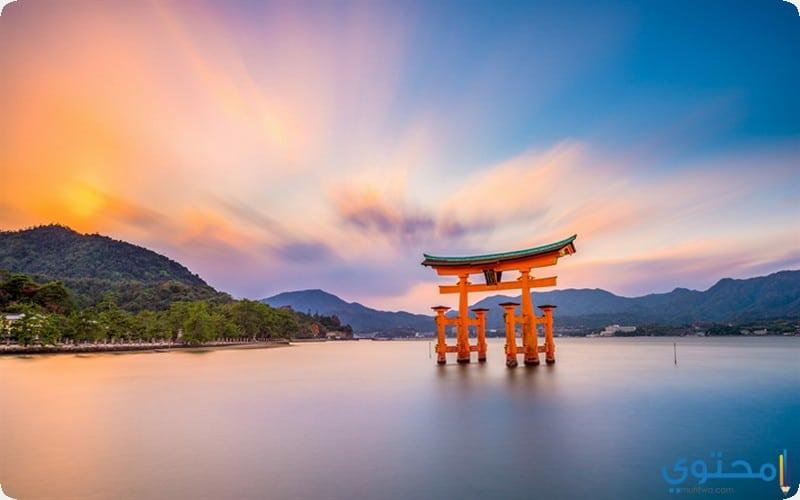 مياجيما اليابان