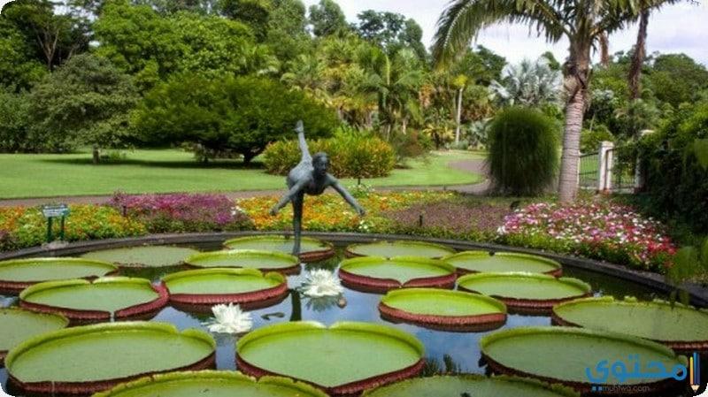 حديقة ساو باولو النباتية