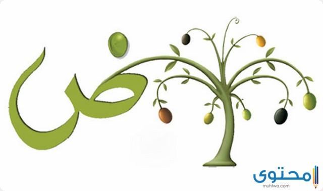 نبات بحرف الضاد