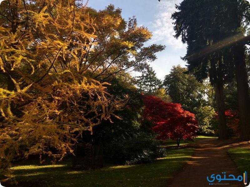 منتزه هاركورت في اكسفورد