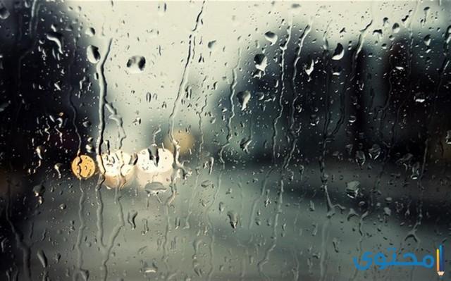 هل تعلم عن الامطار