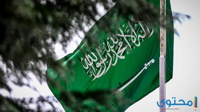 هل تعلم عن السعودية