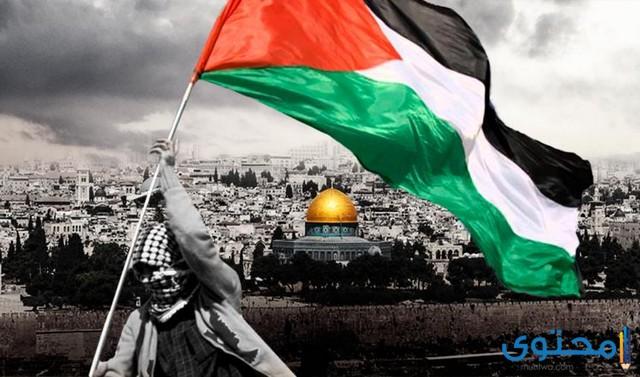 هل تعلم عن فلسطين