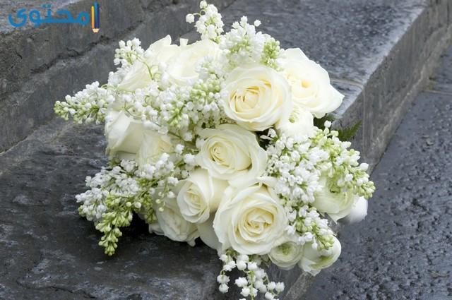 بوكيهات ورد ابيض للعرائس