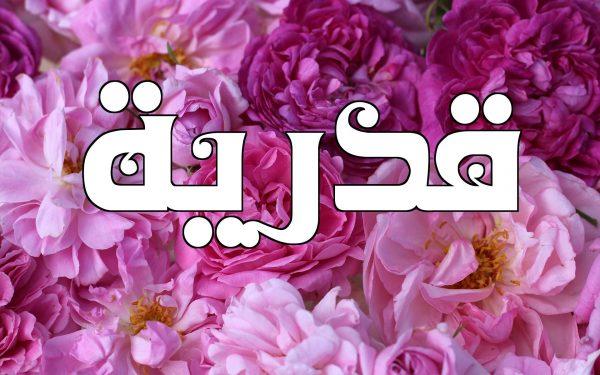 أسماء بنات بحرف الزين