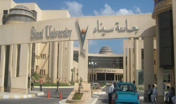 مصاريف جامعة سيناء