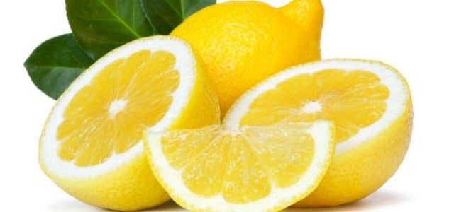 فوائد الليمون للحامل في الشهور الأولى
