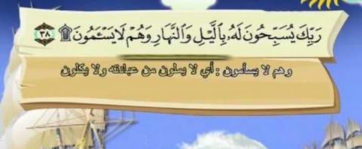 أسماء سورة فصلت عند أهل العلم وفضل تلاوتها