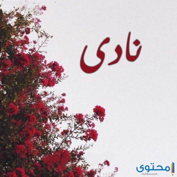 معنى اسم نادي وصفات من يحمله موقع محتوى