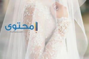 تفسير رؤية لبس طرحة العروس فى الحلم
