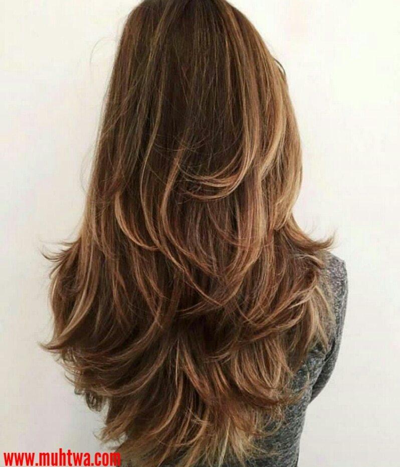قصات شعر