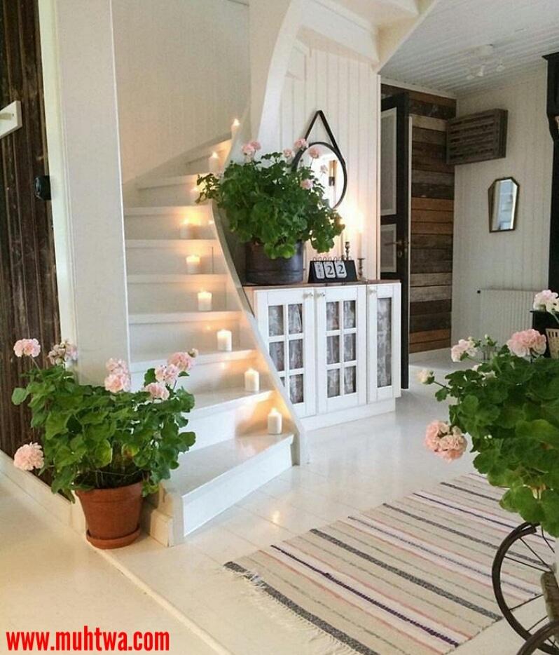 تجديد ديكور المنزل بالنباتات