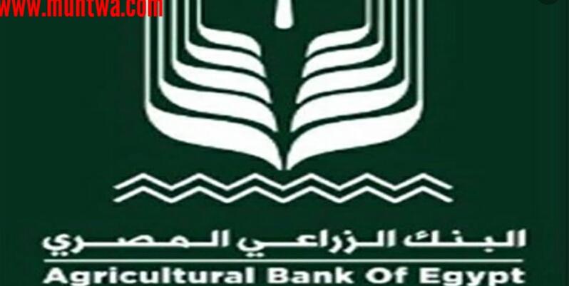 مواعيد عمل وارقام البنك الزراعى المصرى موقع محتوى
