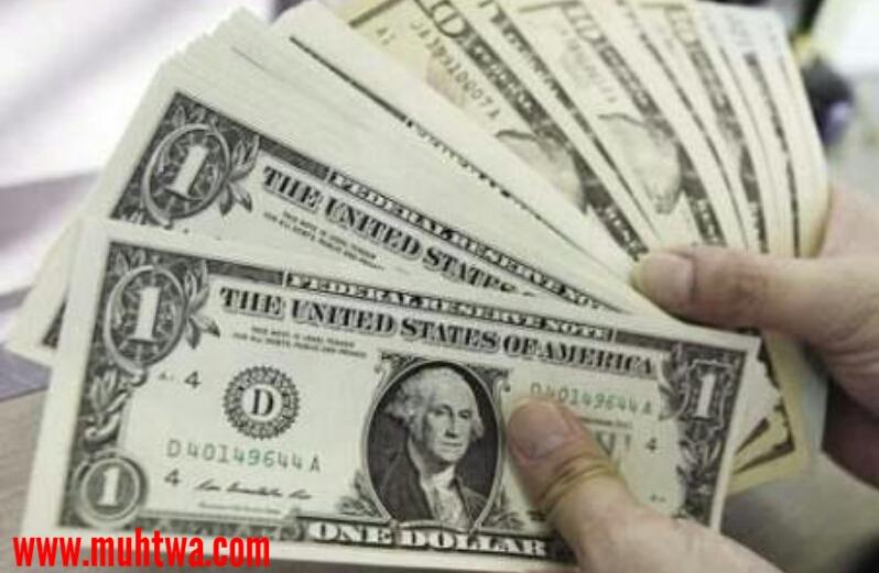 شهادات استثمار دولارية