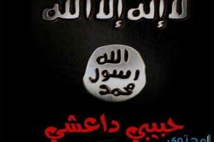 تحميل وقراءة رواية حبيبى داعشي
