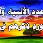 عدد الأنبياء والرسل وأسمائهم من القرآن