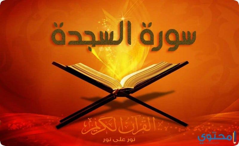 فضل قراءة سورة الملك والسجدة