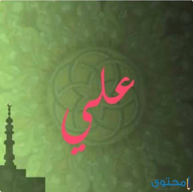 حكم السلف الصالح علي بن أبي طالب