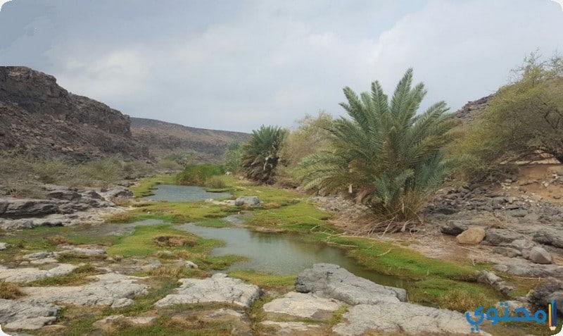 وادي خضرة
