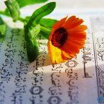 مضمون سورة البروج والدروس المستفادة منها