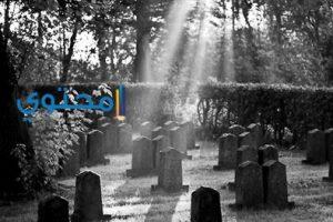 القبر فى حلم المتزوجة والحامل والعزباء