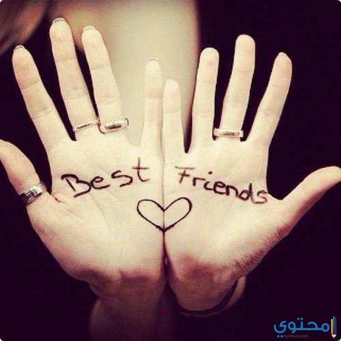 أجمل كلمات عن الصداقة