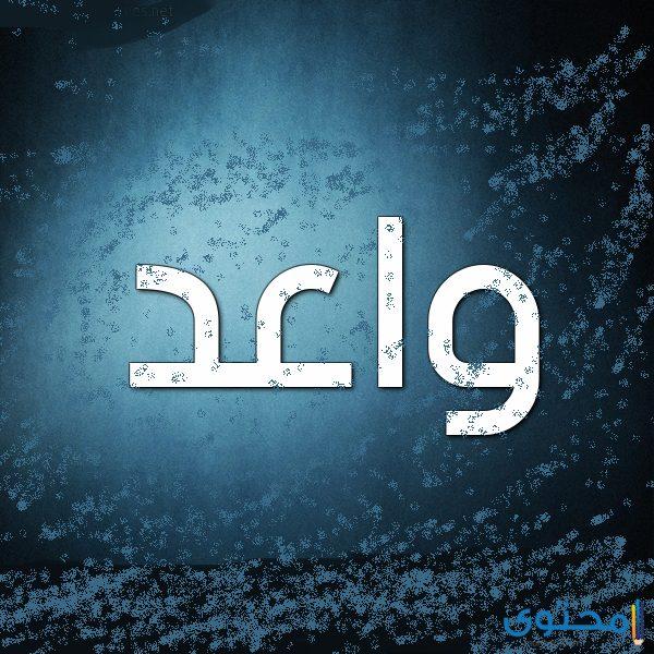 معنى اسم واعد