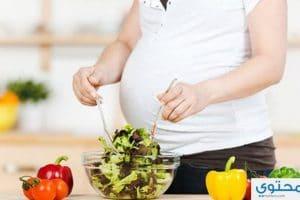 بالتفصيل غذاء الحامل لكل شهر