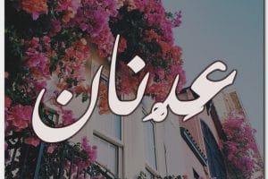 معنى اسم عدنان Adnan بالتفصيل