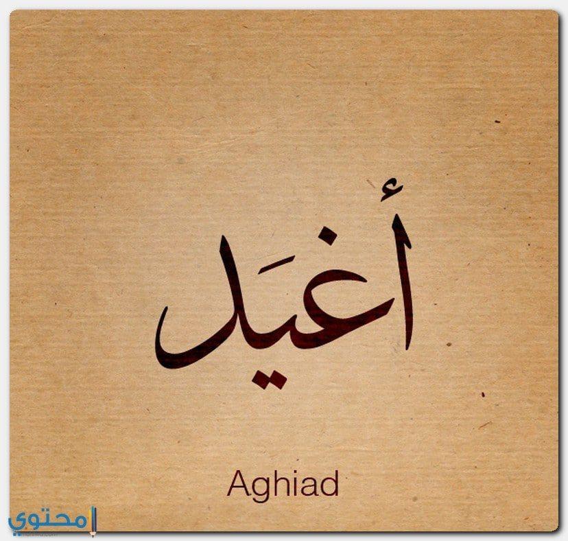 معنى اسم Aghiad