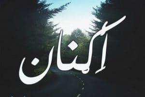 معنى اسم اكنان Aknan بالتفصيل