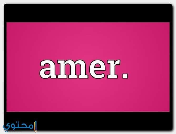 اسم عامر في الإسلام
