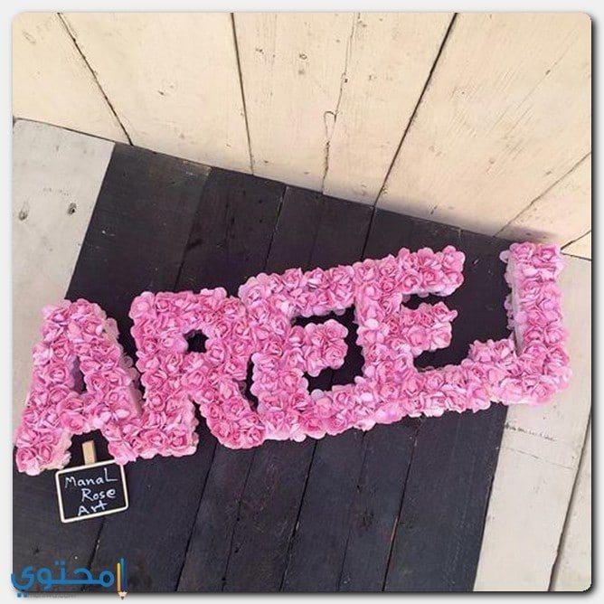 كتابة اسم Areej بالعربية