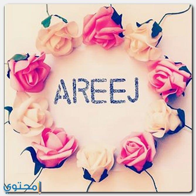 اجدد صور اسم Areej