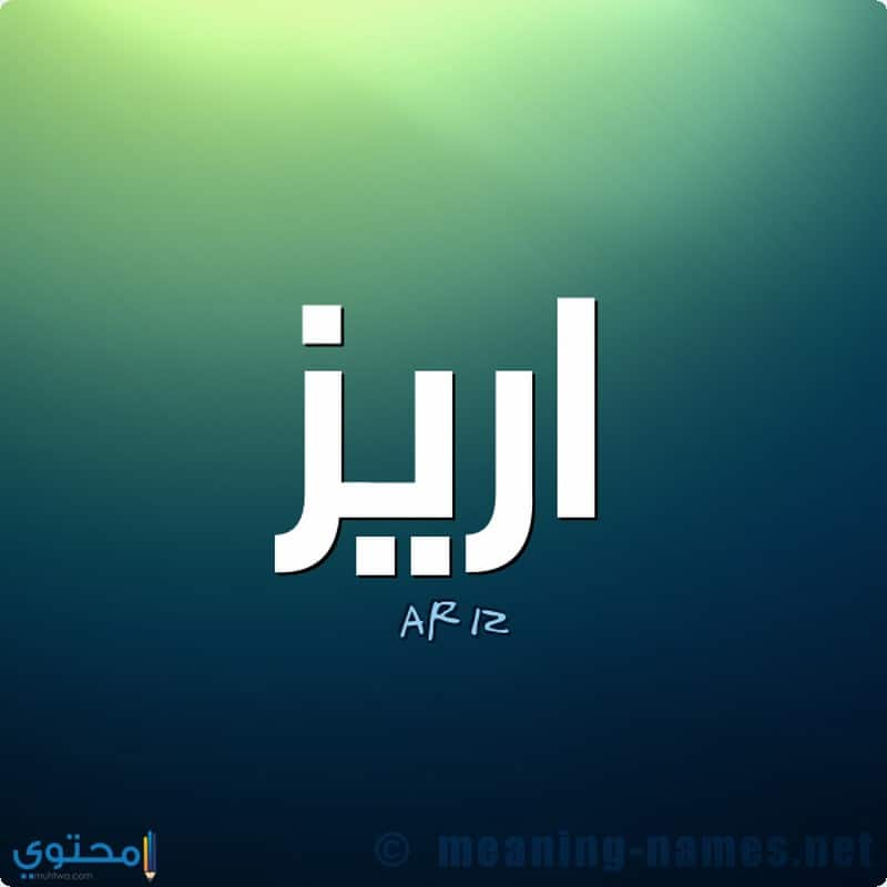 معنى اسم Ariz