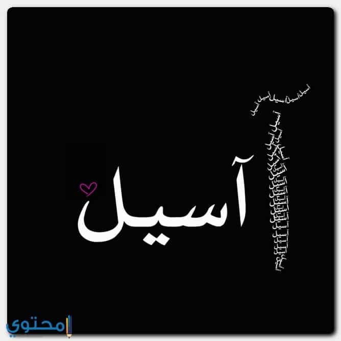 معنى اسم اسيل وصفاتها وحكم التسمية Aseel موقع محتوى