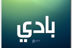 معنى اسم بادي Bady بالتفصيل