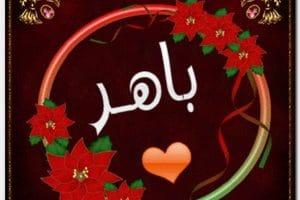 معنى اسم باهر Baher بالتفصيل