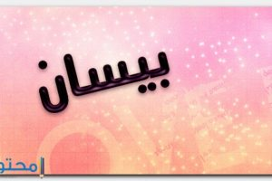 معنى اسم بيسان Bissan وشخصيتها