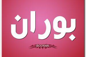 معنى اسم بوران Boran وشخصيتها
