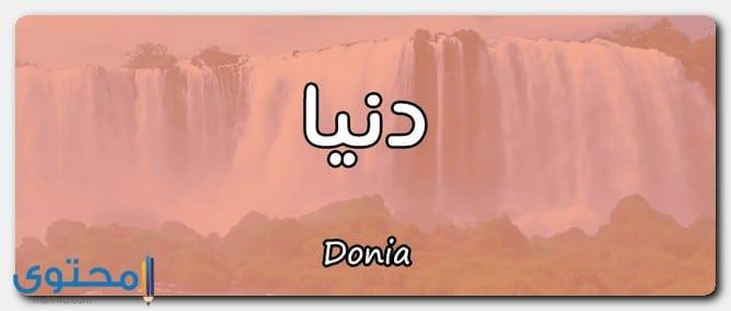 اسم دنيا في القرآن