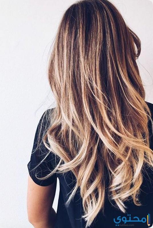 قصات شعر جديدة