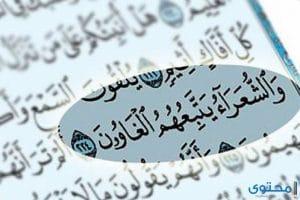 فوائد تلاوة سورة الشعراء و أهم مقاصدها